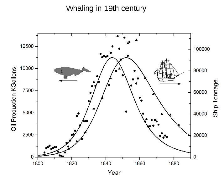 Economie : les limites du modèle actuel  Whalingdyn